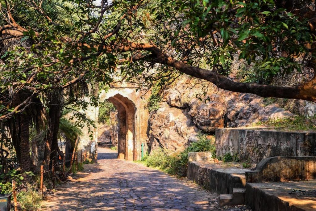 Parc national Ranthambore en Inde