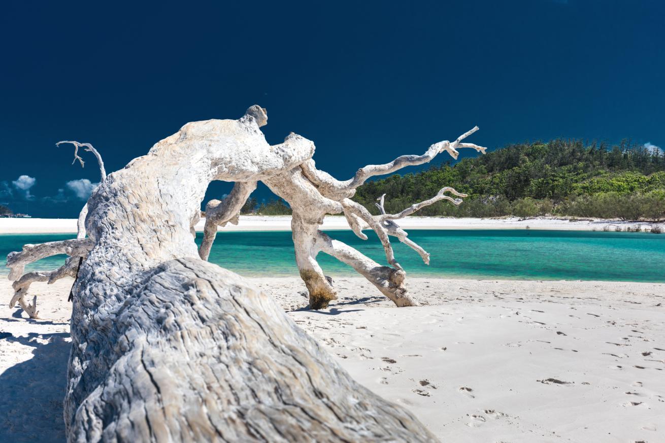 Magnifique plage de Whitehaven