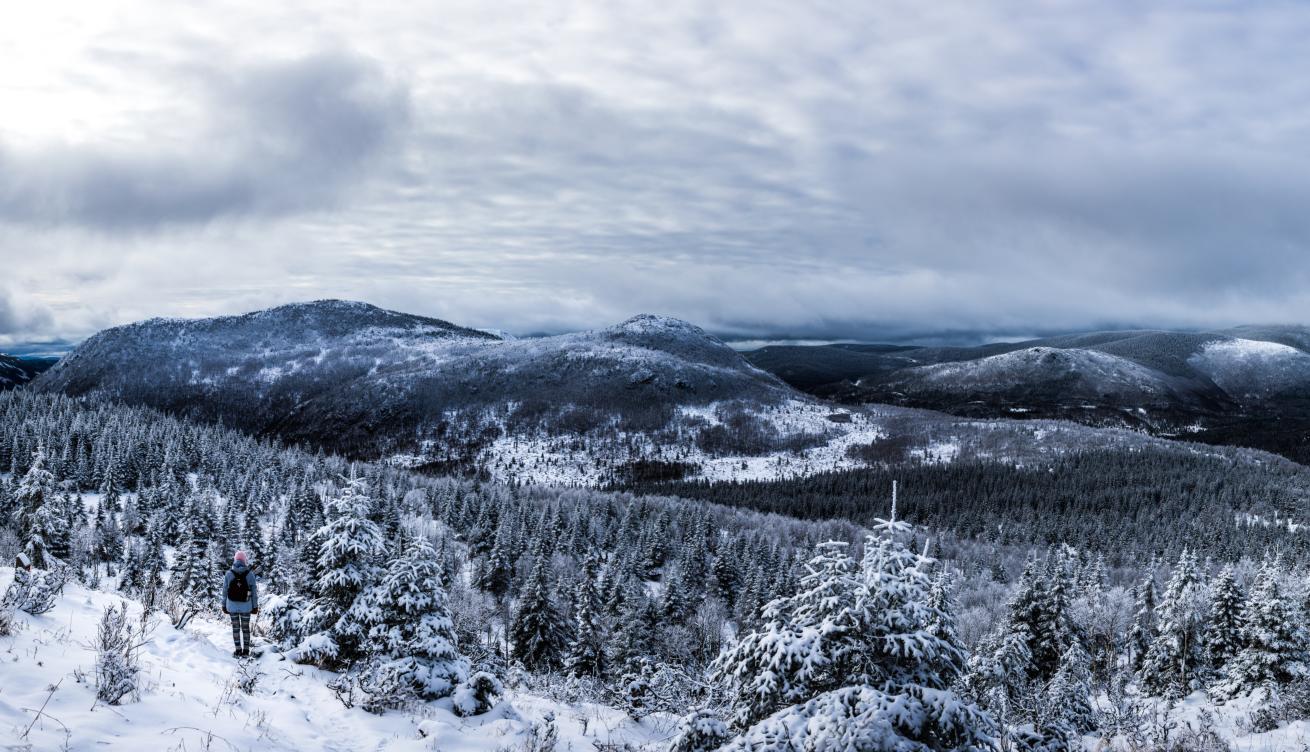Paysage d'hiver au Canada, Québec