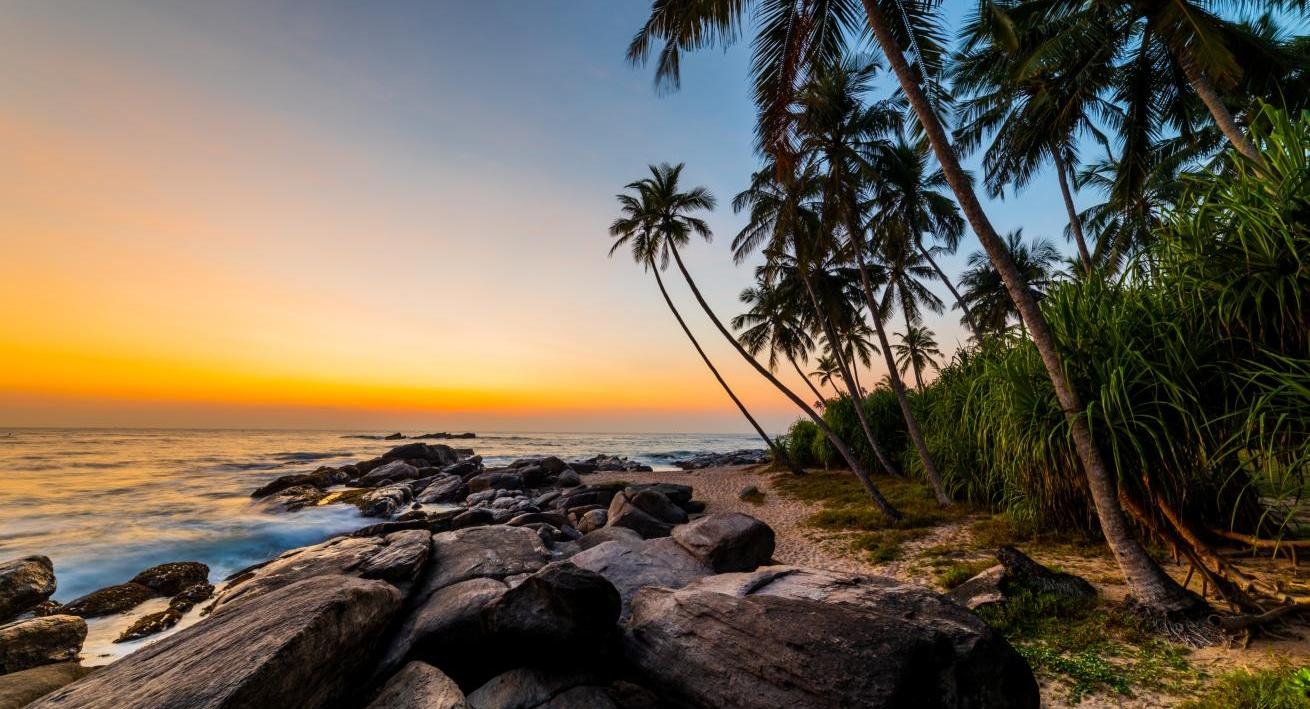Coucher de soleil sur la plage avec des palmiers sur l'île Barbade