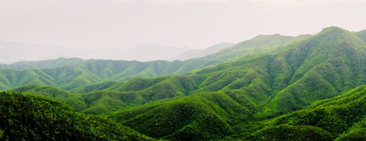 De belles collines verdoyantes Myanmar