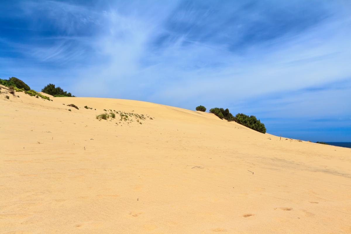 Des dunes sur une plage de Sardaignes