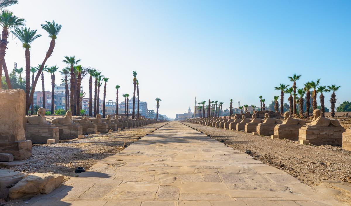 Les Sphinxs du Temple de Louxor