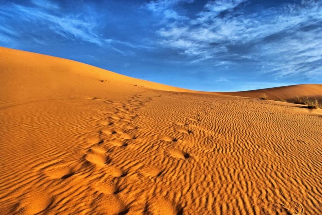 Les portes du désert Sahara