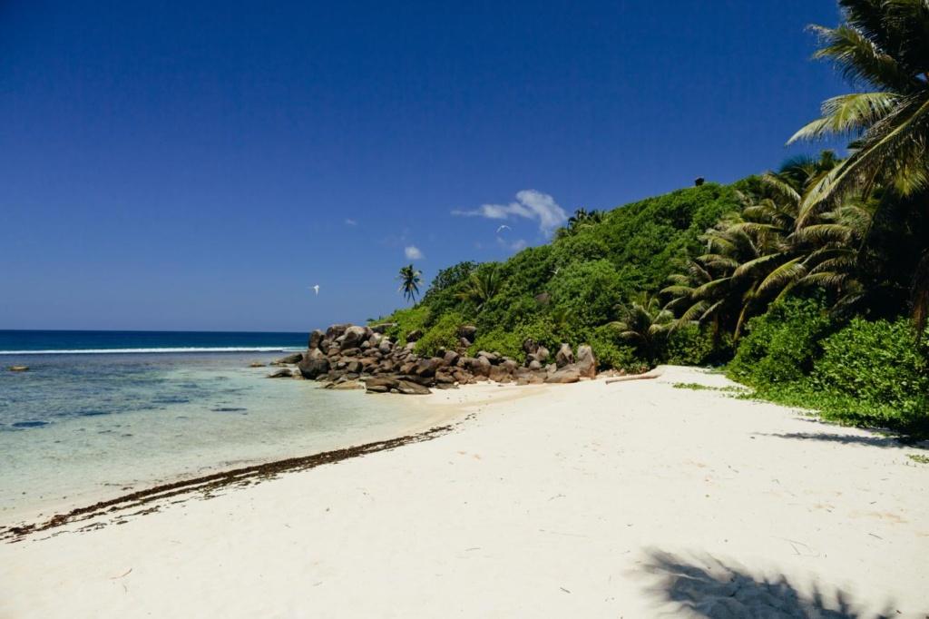 la plage tropicale de l'île des Seychelles