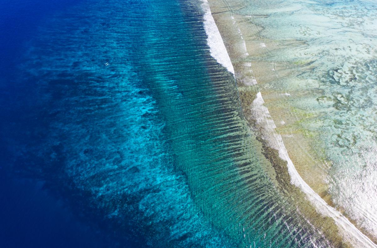 Le récif de l'île de Gili Meno, Indonésie